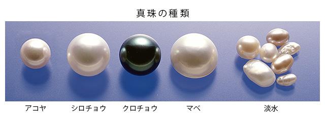 真珠:真珠の種類